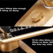 khoa-cua-van-tay-dessmann-s510-2